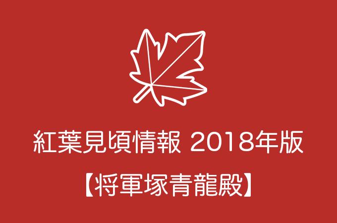 将軍塚青龍殿の紅葉情報2018|色づき始めの時期や見頃情報