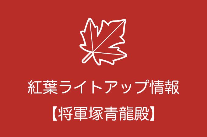 将軍塚青龍殿の紅葉ライトアップ情報|2018年の開催日程