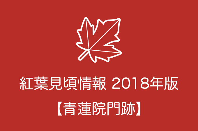青蓮院門跡の紅葉情報2018|色づき始めの時期や見頃情報
