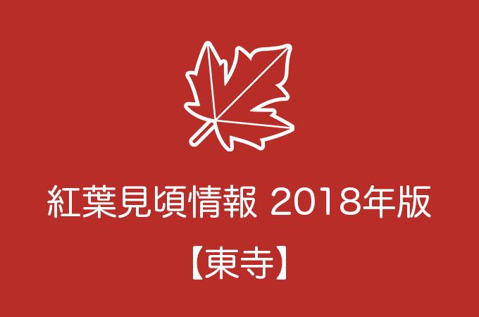 東寺の紅葉情報2018|色づき始めの時期や見頃情報