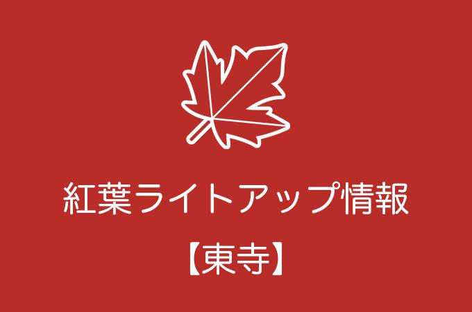 東寺の紅葉ライトアップ情報|2019年の開催日程