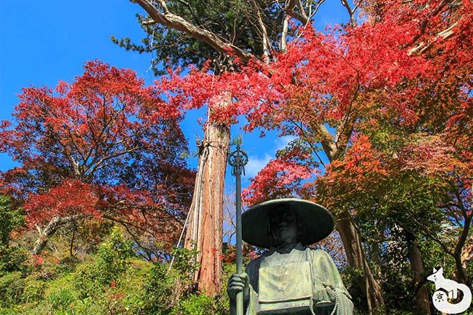 善峯寺の紅葉を見に行ってきた|混雑状況や見どころを写真で紹介