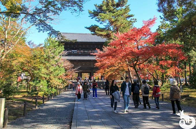 南禅寺の紅葉を見に行ってきた|混雑状況や見どころを写真で紹介