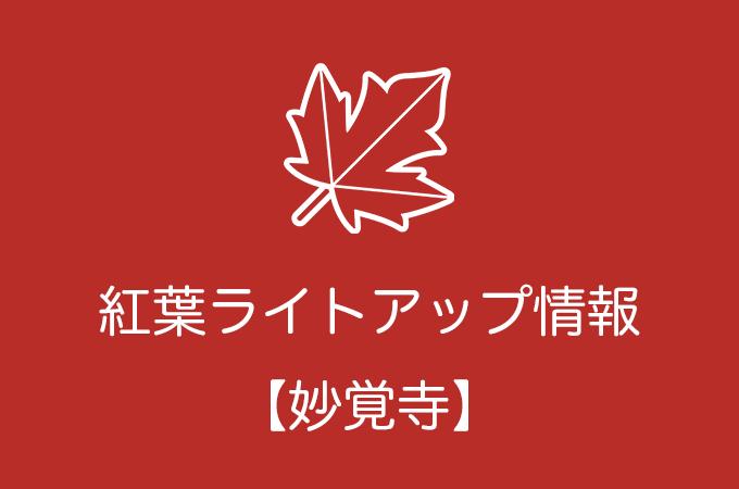 妙覚寺の紅葉ライトアップ情報|2019年の開催日程