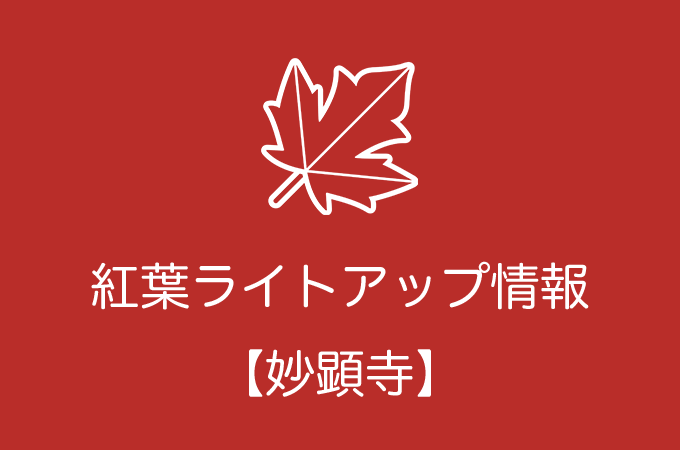 妙顕寺の紅葉ライトアップ情報|2019年の開催日程