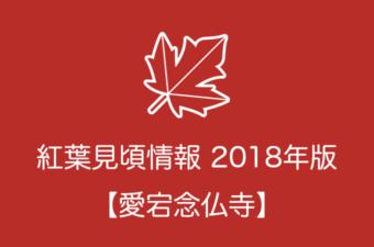 愛宕念仏寺の紅葉情報2018|色づき始めの時期や見頃情報
