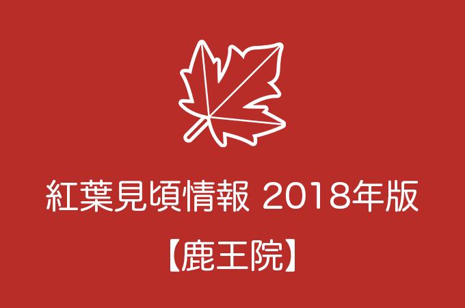 鹿王院の紅葉情報2018|色づき始めの時期や見頃情報