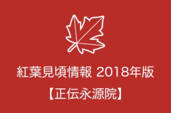 正伝永源院の紅葉情報2018|色づき始めの時期や見頃情報
