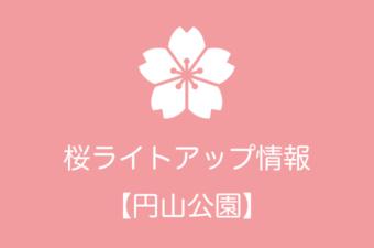 円山公園の桜ライトアップ情報|2018年の開催日程