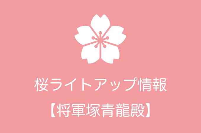 将軍塚青龍殿の桜ライトアップ情報|2019年の開催日程