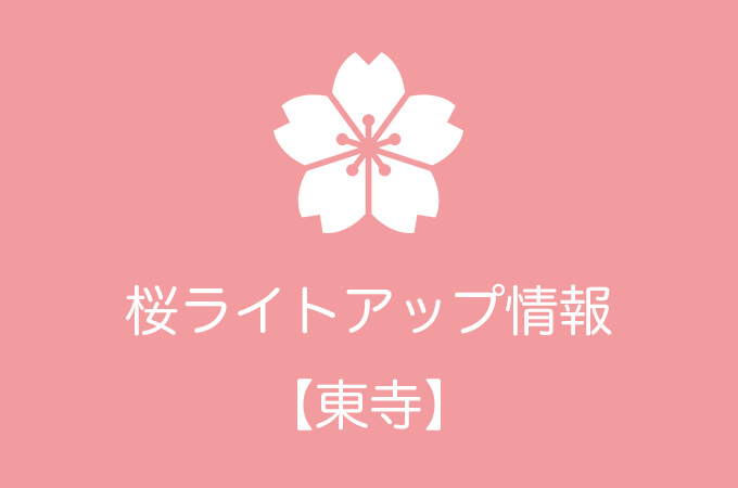 東寺の桜ライトアップ情報|2018年の開催日程