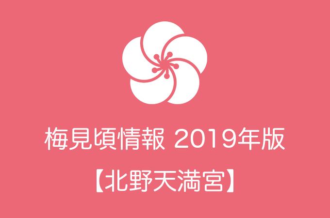 北野天満宮の梅2019|見頃の時期および開花情報