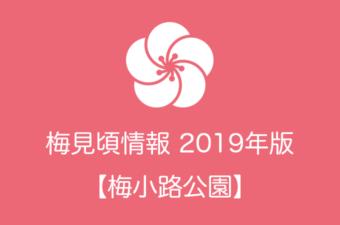 梅小路公園の梅情報2019|見頃の時期および開花情報