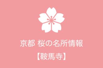 鞍馬寺の桜情報|2019年の開花予想から例年の見頃時期まで