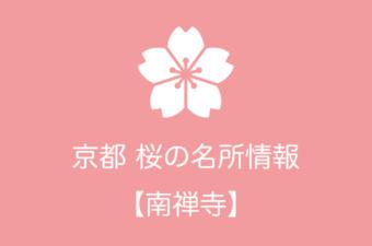 南禅寺の桜情報|2019年の開花予想から例年の見頃時期まで