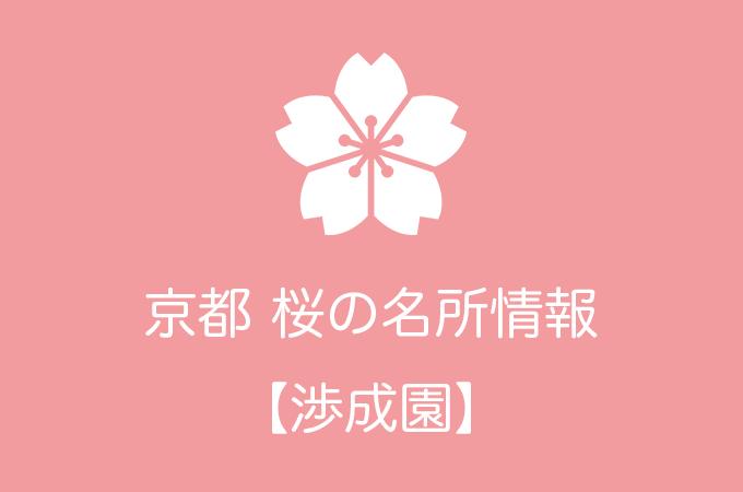 渉成園の桜情報|2019年の開花予想から例年の見頃時期まで