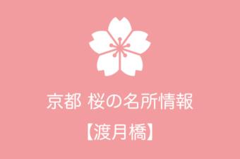 渡月橋の桜情報|2019年の開花予想から例年の見頃時期まで