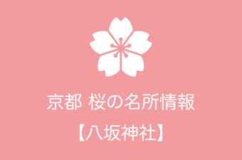 八坂神社の桜情報 2019年の開花予想から例年の見頃時期まで