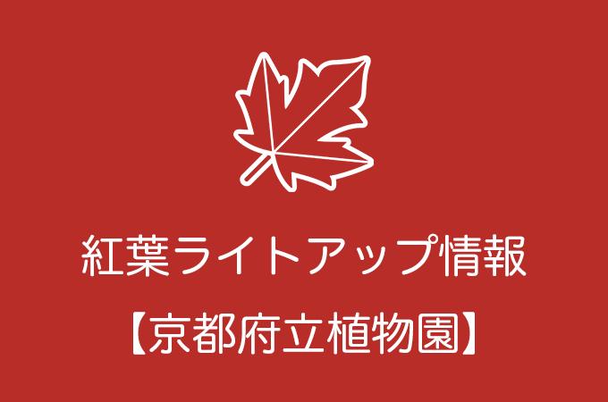 京都府立植物園の紅葉ライトアップ情報