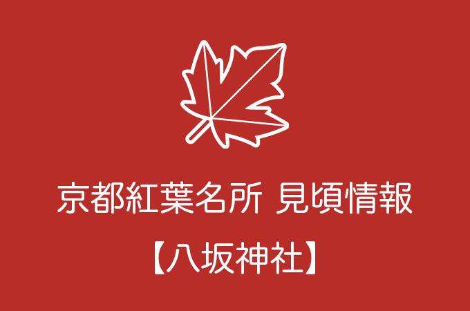 八坂神社の紅葉情報