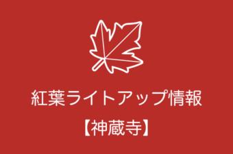 神蔵寺の紅葉ライトアップ情報