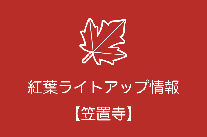 笠置寺(笠置山もみじ公園)の紅葉ライトアップ