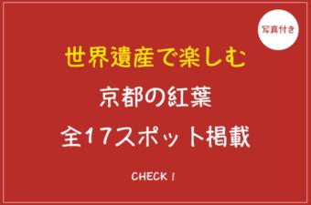 京都の世界遺産は紅葉も楽しめる?各スポットの紅葉情報まとめ