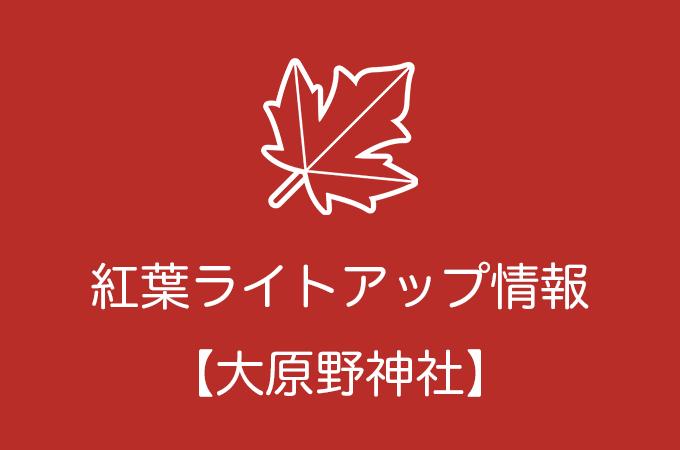 大原野神社の紅葉ライトアップ情報